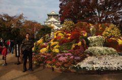 苗再新照片2010日本之旅04