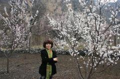 崔虹照片2010十渡写生06