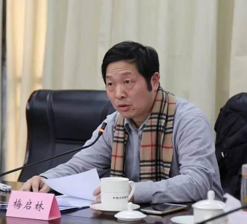 13中国文联美术艺术中心副主任梅启林发言.jpg