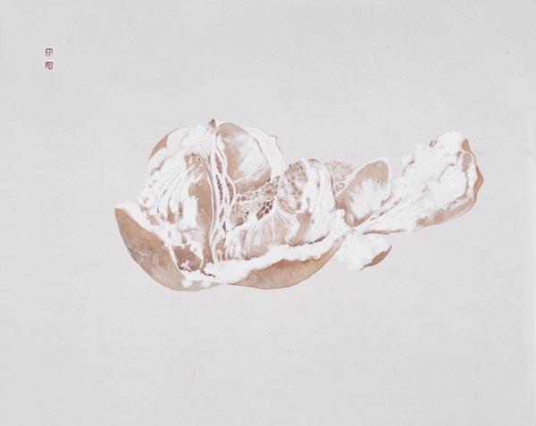 周午生 柚子45×55cm 2007.JPG