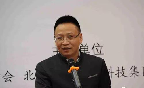 林亚明   国宝文投集团董事长.jpg